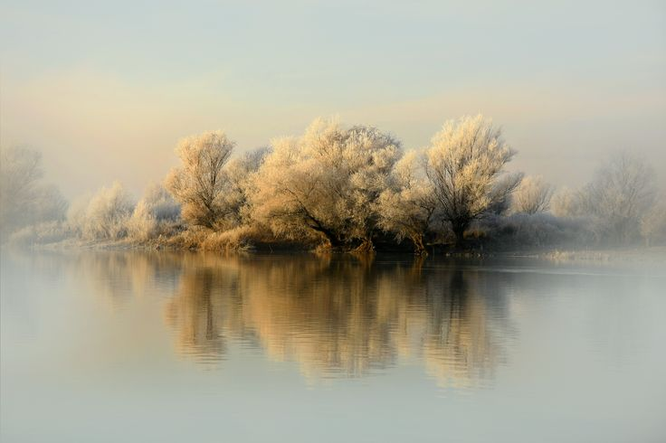 Photo first frost by Sеrgei Belyaev on 500px