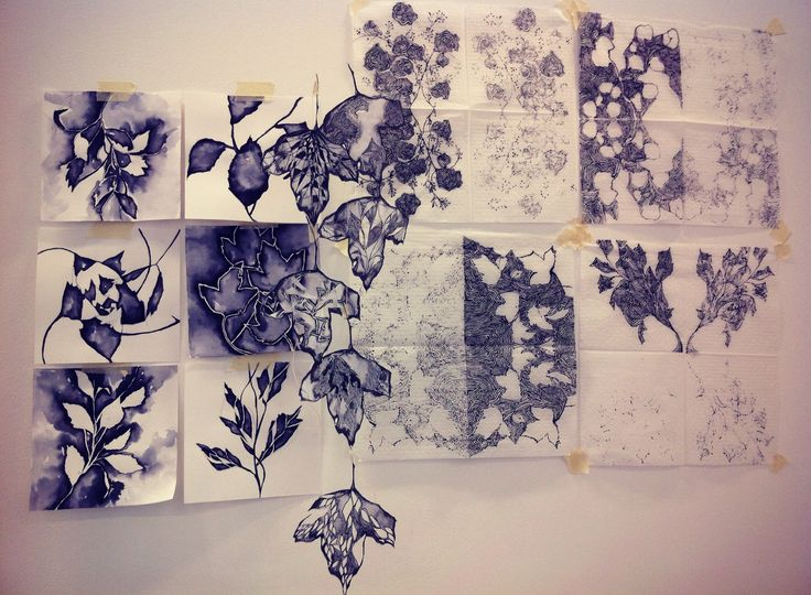 Observational drawings of dead plants