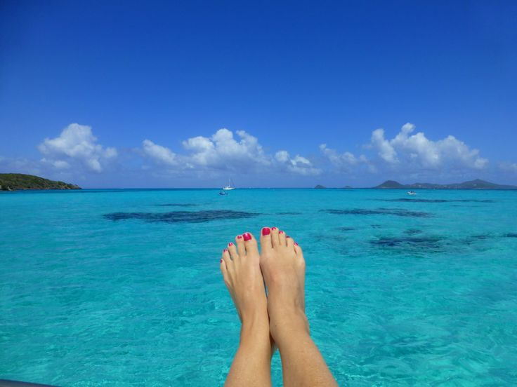 1000 Images About Tobago Cays Grenadines On Pinterest Parks Exploring And Underwater