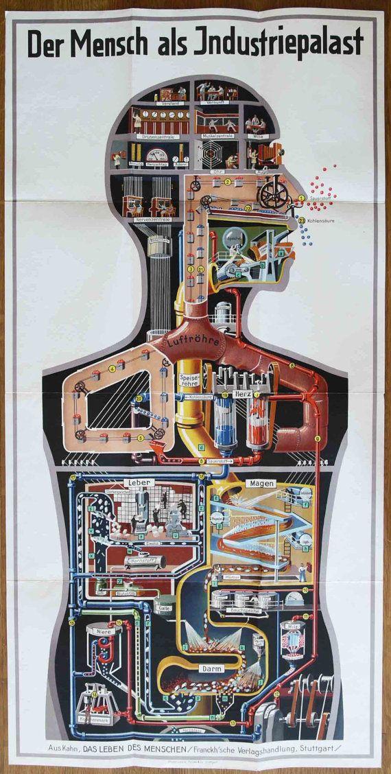 Das Leben des Menschen Volume 5 by FRITZ KAHN, including 'Der Mensch Als INDUSTRIEPALAST' Poster, Graphic Design