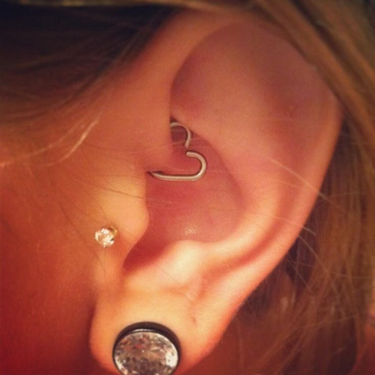 #piercing #stretchedlobes #bodycandy////I really want tragus piercing but Im worried it might hurt too much