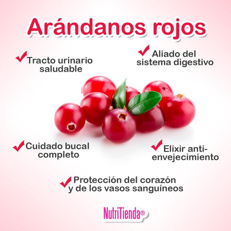 El ARÁNDANO ROJO ¡PEQUEÑO PERO PODEROSO! Esta fruta diminuta no solo es una joya gastronómica, sino que también posee gran cantidad de propiedades beneficiosas que hacen que sea una fruta muy saludable. Conócelas aquí: http://blog.nutritienda.com/beneficios-arandano-rojo/