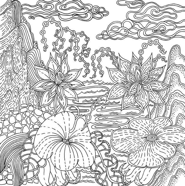 Flowers Coloring Pages For Adults Amazon Adult Coloring Book App ...