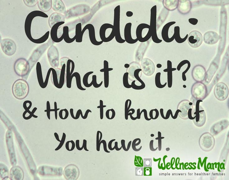how to fix candida overgrowth