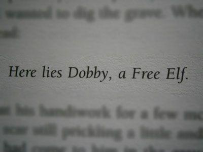 here lies dobby - photo #22