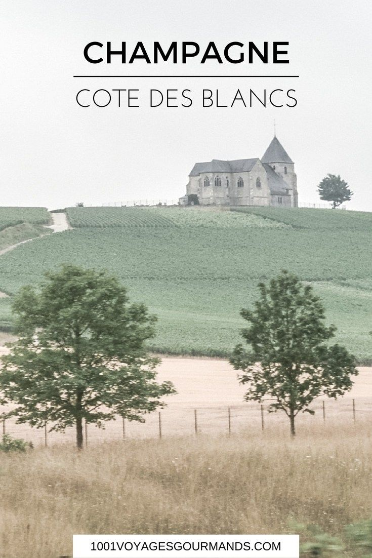 Trip To Champagne – Côte des Blancs and Épernay