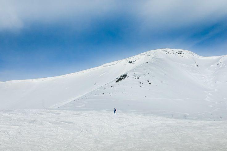 Хибины под снегом. Кольский полуостров. Россия