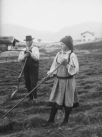 Slåttonn på Øvre Kvåle i Bygland Lindahl.jpeg
