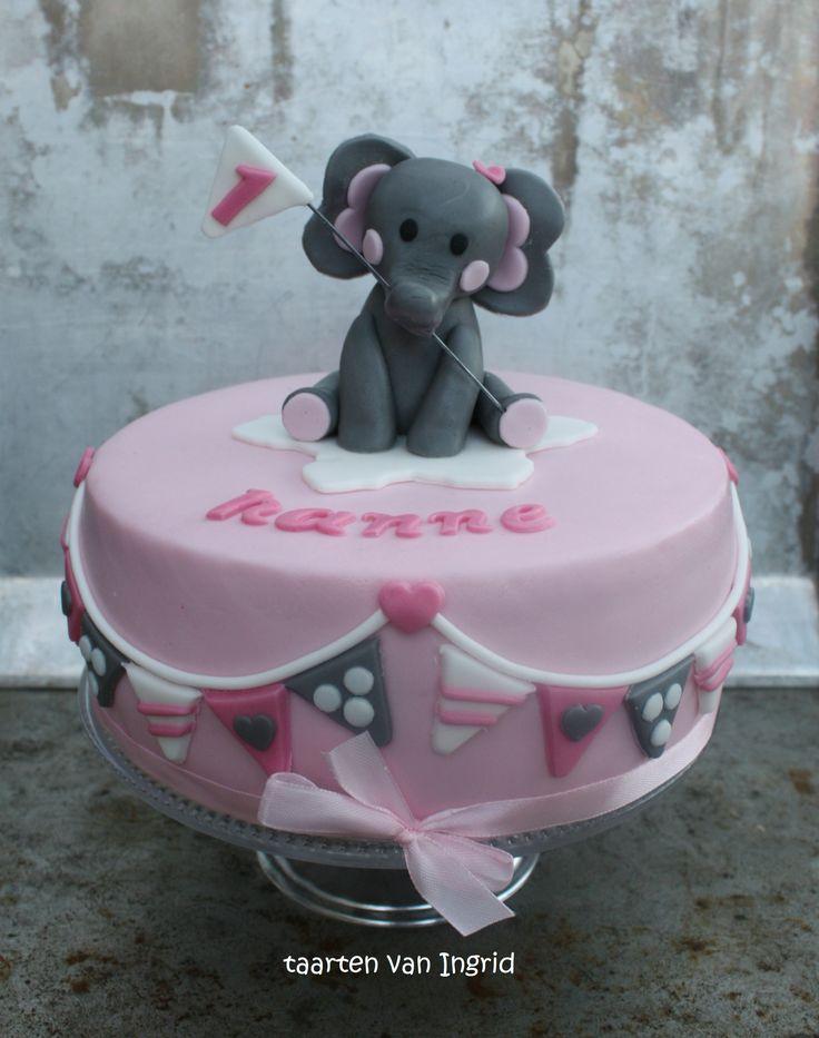 Taart olifant / elephant cake