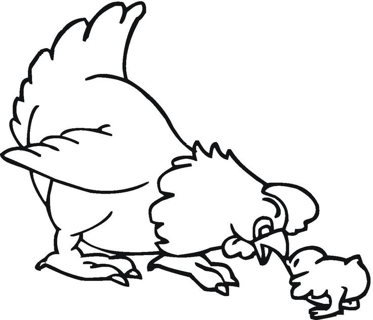 A Hen Farm Animal Coloring Pages