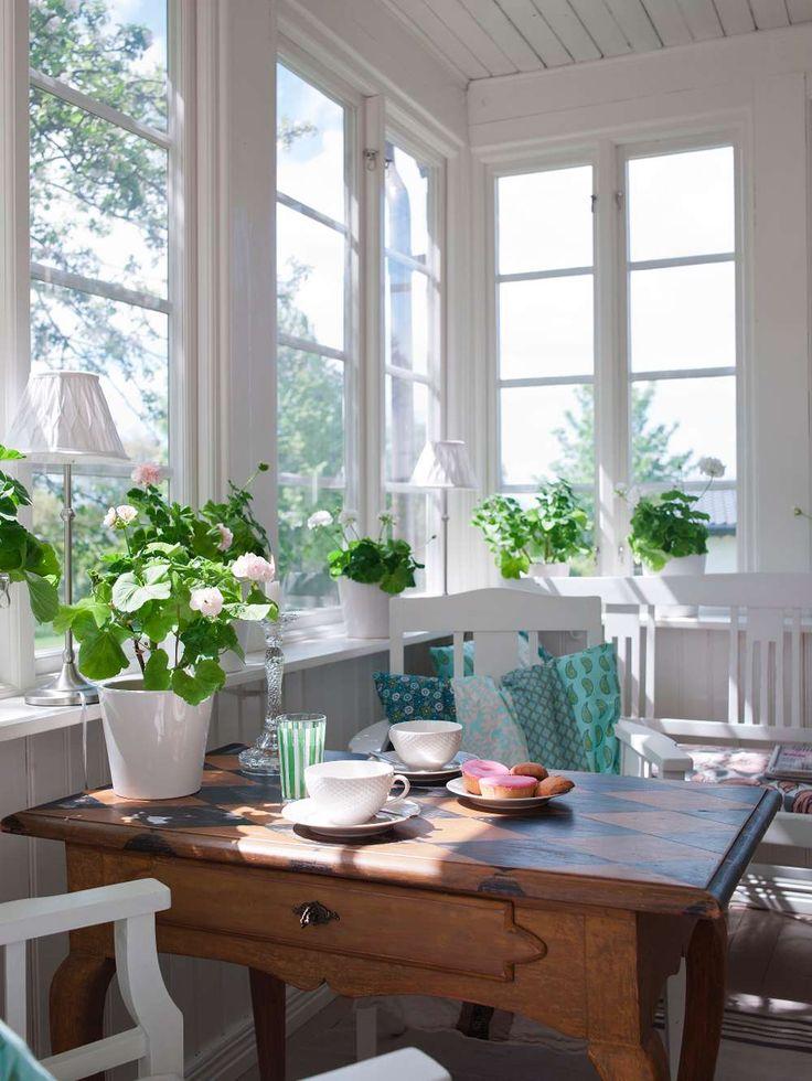 På glasverandan växter mängder av pelargoner. Av Pia Mattsson Foto Helene Toresdotter