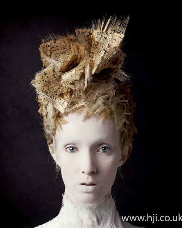 Skyler McDonald 2012 Avant Garde Hairdresser of the Year Finalist