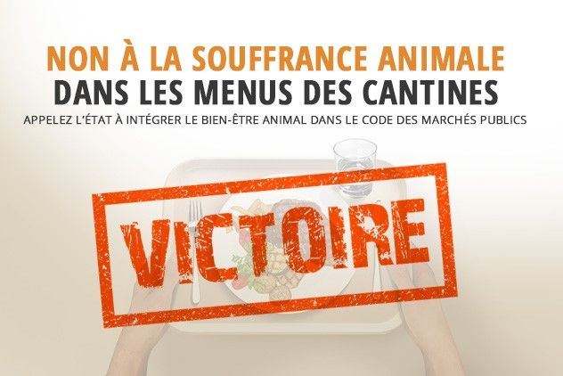 WELFARM's campaign to include animal welfare in the French Public Procurement Code has paid off.  Canteens in public institutions can now officially award contracts based on animal welfare criteria.