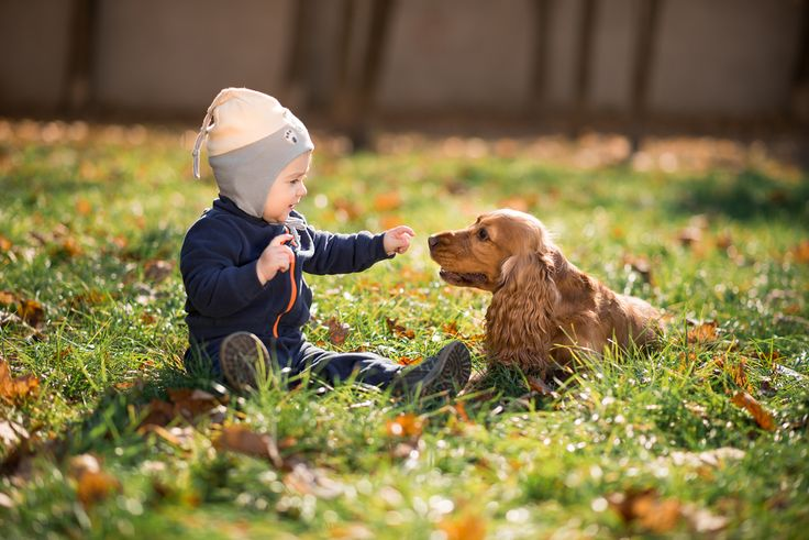Want to see something cute? Almost two dozen adorable pictures of infants and children with puppies and dogs.