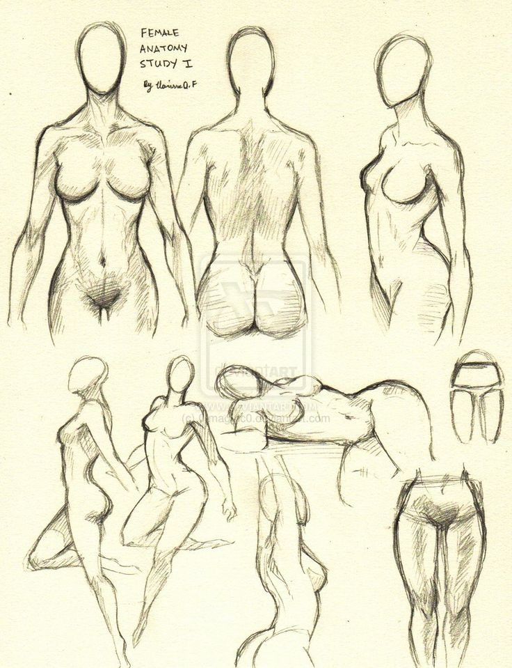 Female Anatomy Study 1 by ~0ImagInc0 on deviantART        ★ || CHARACTER DESIGN REFERENCES (https://www.facebook.com/CharacterDesignReferences & https://www.pinterest.com/characterdesigh) • Love Character Design? Join the Character Design Challenge (link→ https://www.facebook.com/groups/CharacterDesignChallenge) Share your unique vision of a theme, promote your art in a community of over 25.000 artists! || ★
