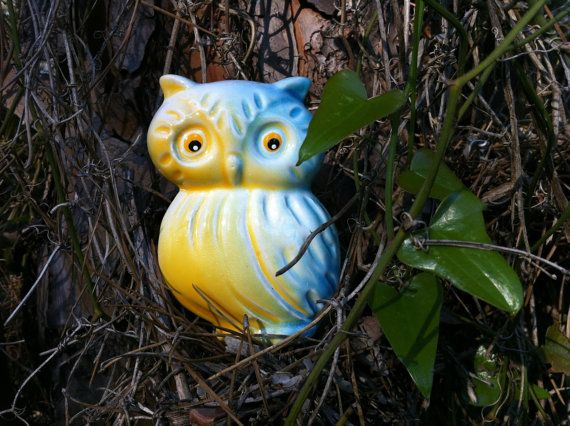 According to magical traditions, owls have the power of wisdom, night vision and stealth, are able to hear unsaid words and to perceive the truth behind the lies.