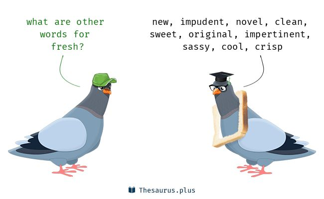 Fresh synonyms https://thesaurus.plus/synonyms/fresh #fresh #synonym #thesaurus #new #impudent #clean #novel #sassy #impertinent #original #sweet #bracing