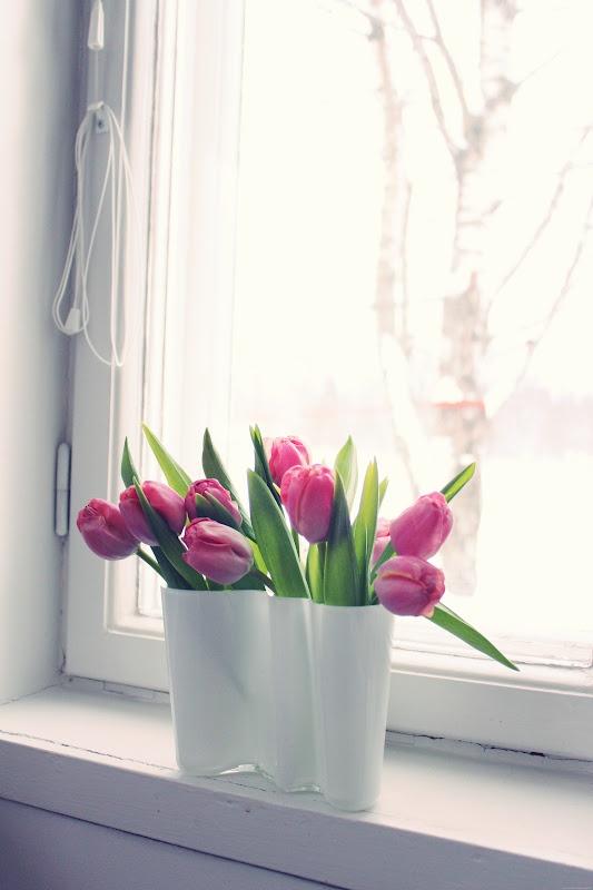 Dejiss: tulips.
