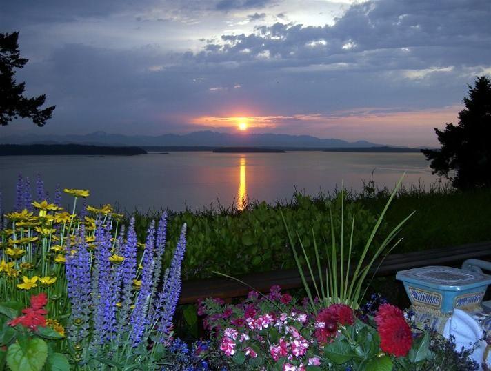Bildergebnis für Vashon Island with beautiful flowers in September