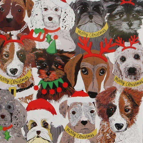 Dogs in antler charity Christmas cards - pack of 8                                                                                                                                                                                 More