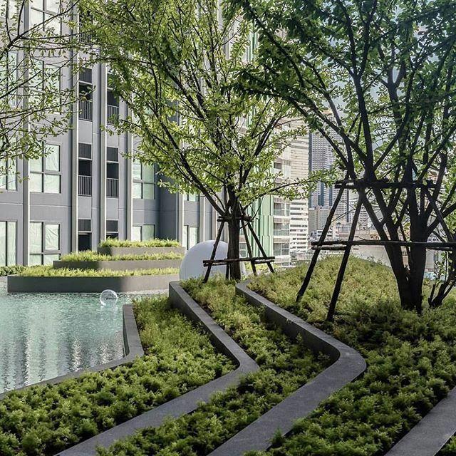 Ideas For Landscape Gardening Landscapingthegardenonabudget Landscape Design Garden Landscape Design Urban Landscape