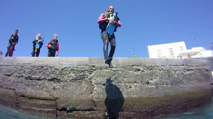 Tauchen auf Teneriffa mit Ocean Trek