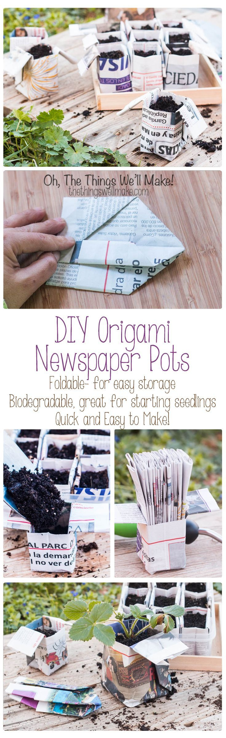 Fold your own quick and easy origami newspaper pots for your seedlings! These can be folded in advanced and stored in the folded position to save space. Because they are biodegradable, you can plant the seedlings with their pot and don't have to disturb