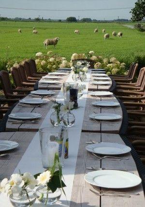 Landelijk gedekte tafel op het terras van de Steinsetuin.nl.