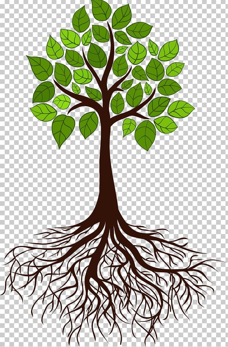Download Big Green Tree With Roots Underground On White For Free Green Trees Tree With Roots Drawing Cartoon Trees