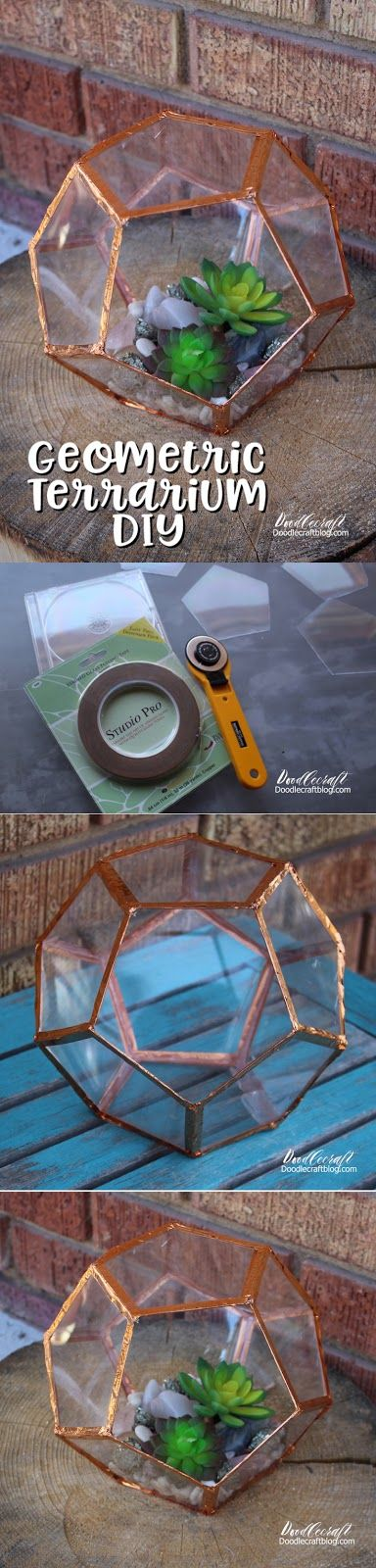 Geometric Succulent Terrarium DIY!  Made from CD Cases!!!  Great Upcycle!