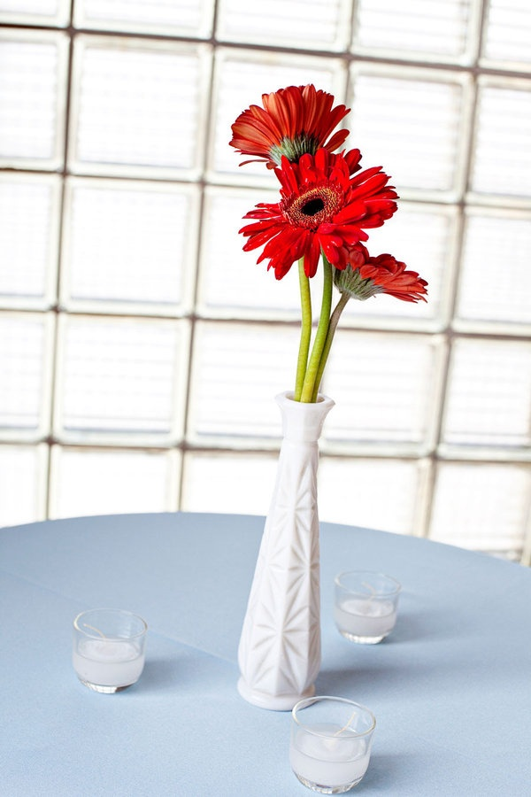 Gerbera Daisies are easy to work with and easy to care for. These charming centerpieces would be both elegant and affordable.Centerpieces Ideas, Gerbera Daisies, Photo Books, Bridesmaid Plates, Daisies Centerpieces, Charms Centerpieces, Red Gerbera, Head Tables, Diy Wedding