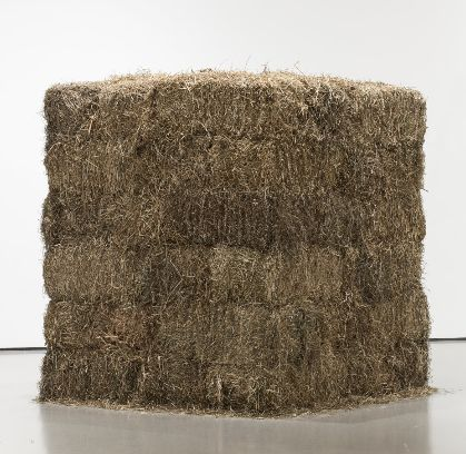 TONE VALUE In thios photograph by Cildo Meireles you can see all the different values and tones in the hay bail with the light used and the angle the picture was taken at. Meireles, C. (1990). Thread. Retrieved September 15, 2015, from http://www.moma.org/collection/works/81983?locale=en