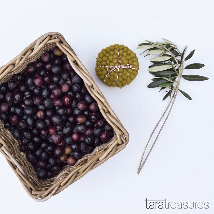 Our olive harvest with olive-coloured coasters. #olive