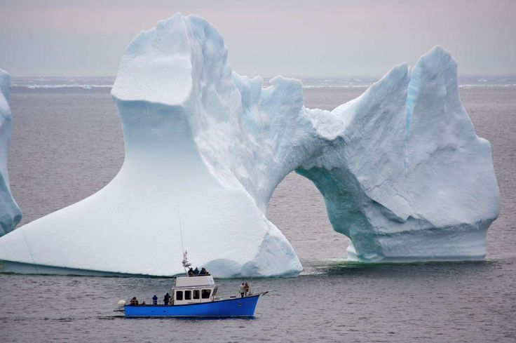 Iceberg Alley - Rolf Hicker/Getty Images