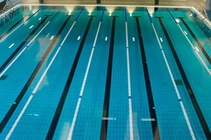 Cerámica para revestir piscinas publicas y cerámica para coronar piscinas olímpicas.