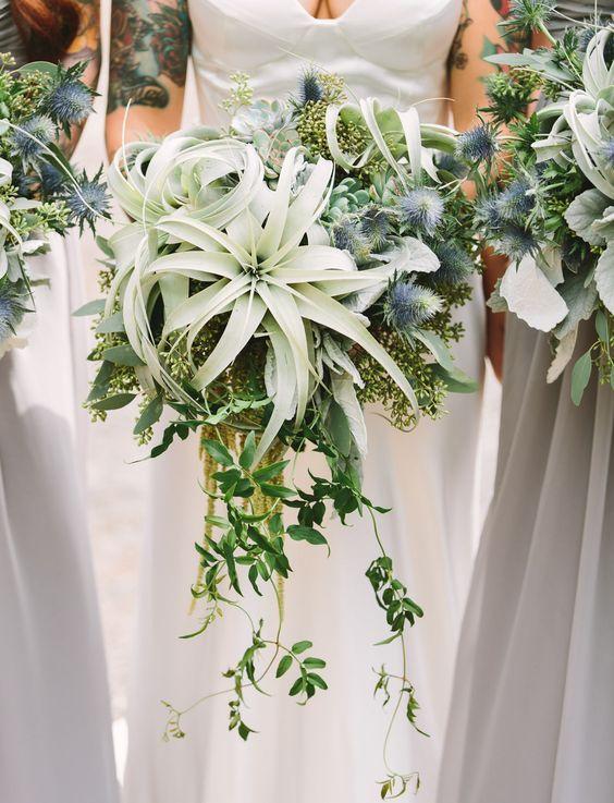Air Plants, Thistle + Succulents Wedding Bouquets / http://www.himisspuff.com/air-plants-wedding-ideas/