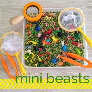 #Living on a Latte: Minibeast Activities