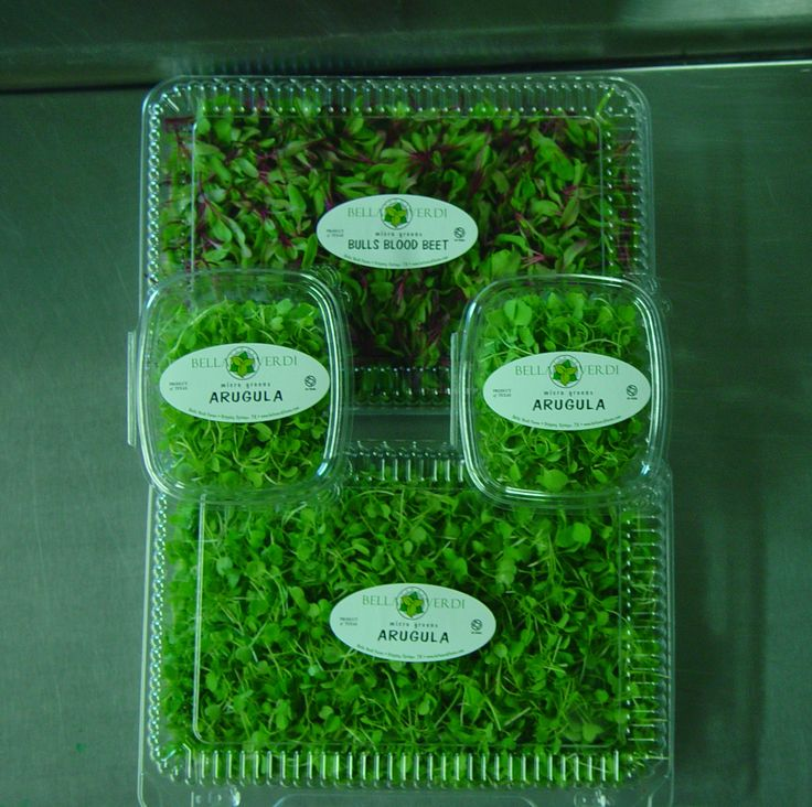 Our packaging! microgreens Pinterest Packaging ideas