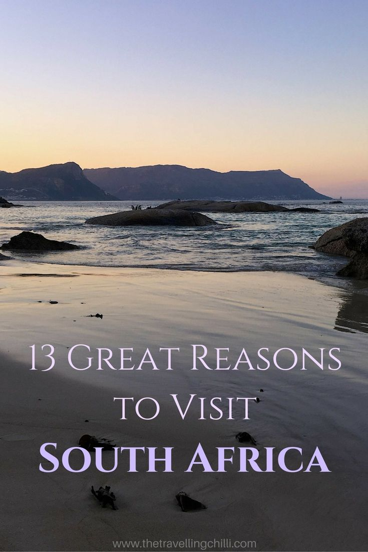 13 Great reasons why you should visit South Africa ***************************************************************************************** wildlife in South Africa | Oldest wine industry outside of Europe | Cape Town | South Africa is the rainbow nation | Safari in South Africa | Highest bungee jump | Whale watching in South Africa