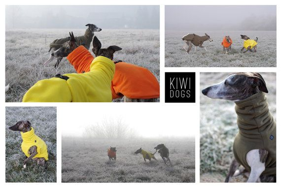 Dog Winter coat for all breeds WiCoat custom made от KIWIDOGS