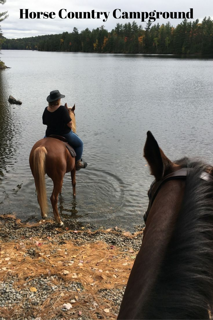 Horseback riding and horse swimming at Horse Country Campground in the Ottawa Valley