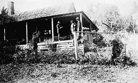 1924 Mitchell's Creek, Mansfield, Victoria museumvictoria.com.au
