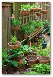 Watch our video below of Container Garden Ideas for planning or designing a ve able container garden Simple container gardening tips for creating the