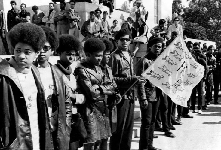 Cointelpro and the black panther party Essay