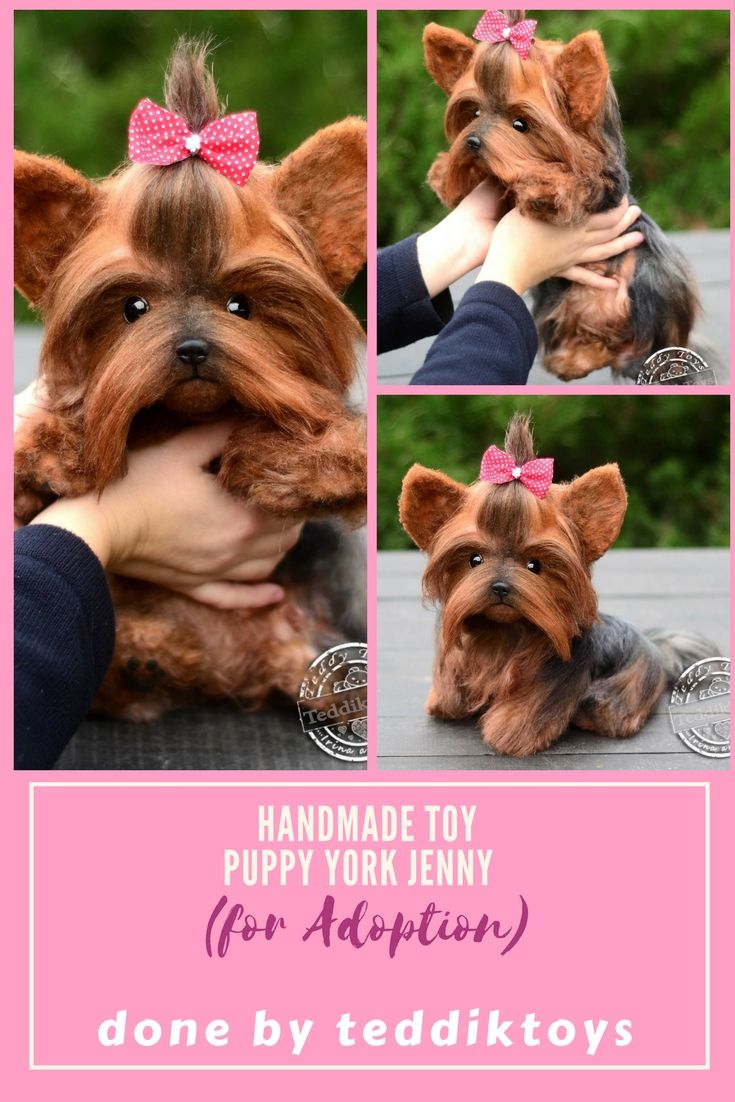 puppy yorkshire terrier teacup yorkie  Handmade toys for Adoption . Price $ 450 more detailed description you can find at our store etsy