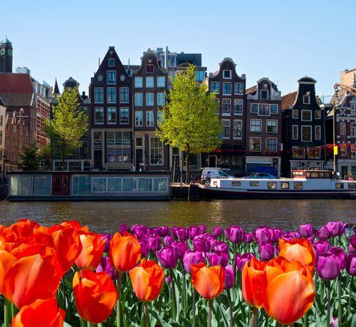 Amsterdam je jedno z nejkrásnějších a nejmalebnějších měst na světě. Jedinečná atmosféra větrných mlýnů a okolních rybářských vesniček vás dostane.