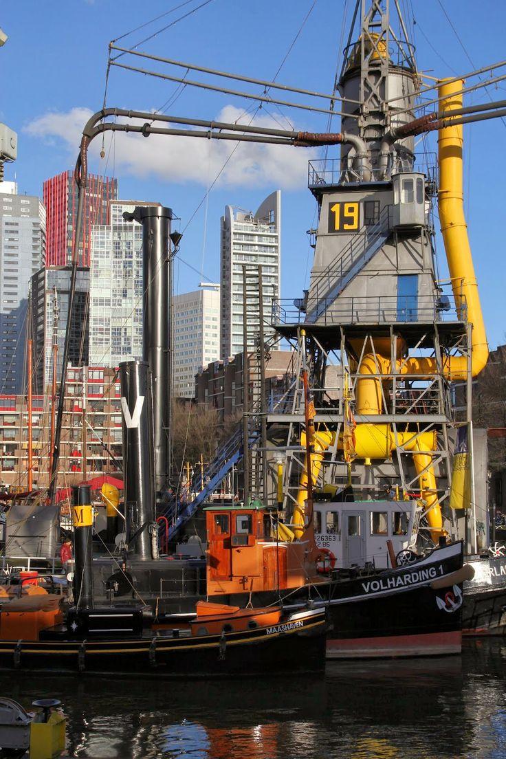 Rotterdam through my lens