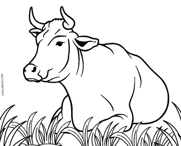 1000 Ideen Zu Ausmalbild Kuh Auf Pinterest