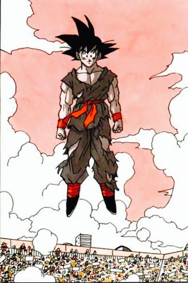 After it's all said and done. Goku at the last tournament of the Z series.