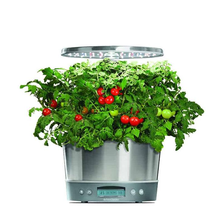 10 Indoor Gardening Systems That You Can Buy Right Know 400 x 300